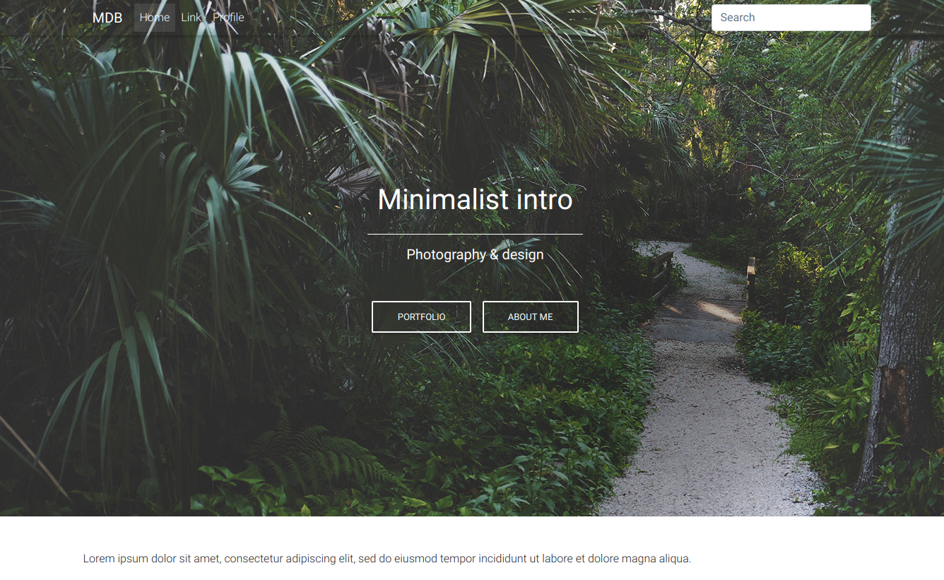 minimalistic_landing_page