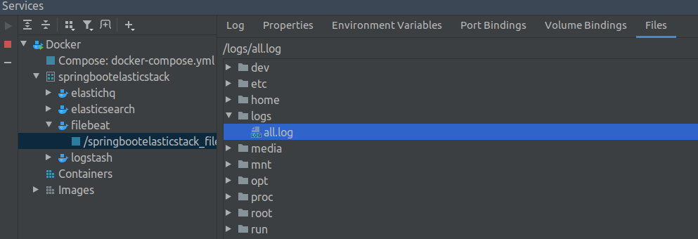 log file mounted to filebeat container screenshot